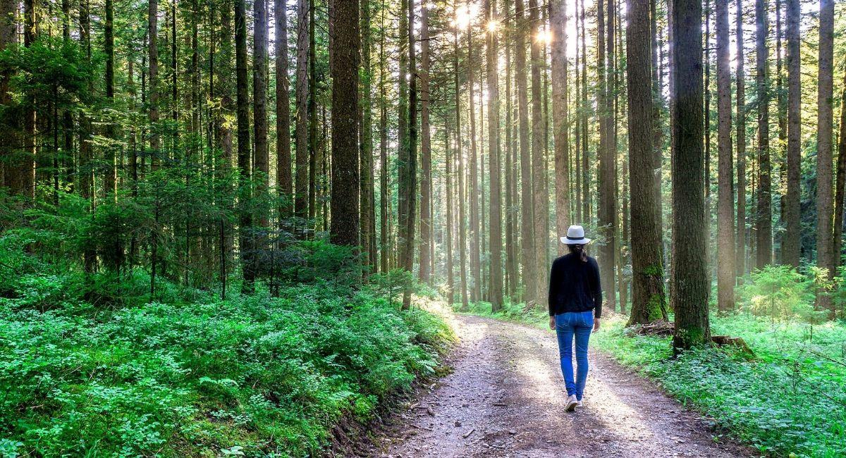 10 Beneficios de la meditación caminando