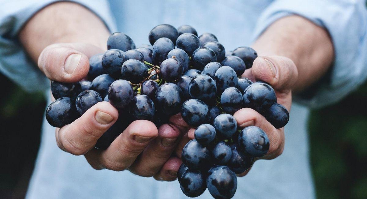 7 Beneficios de las uvas para la salud