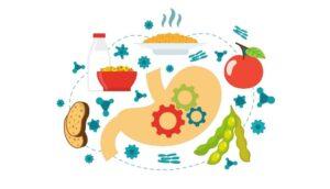 Los 5 mejores alimentos para mejorar la digestión