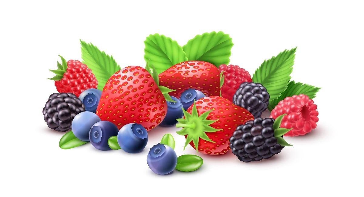 10 Alimentos ricos en antioxidantes que debería comer