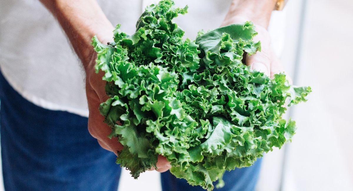 10 Alimentos que ayudan a adelgazar aprobados por nutricionistas