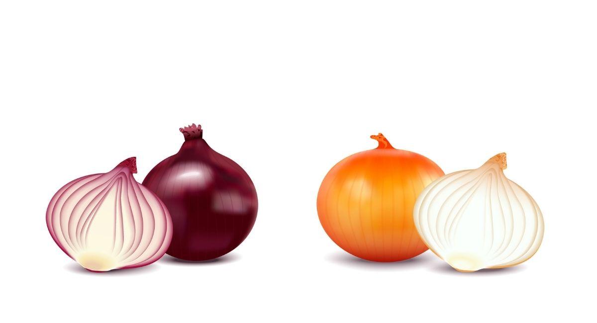6 Propiedades de la cebolla para la salud