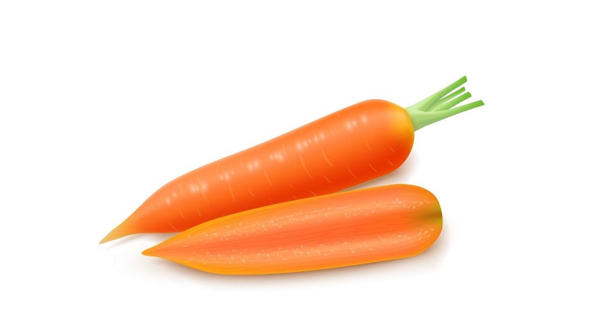 8 Propiedades De La Zanahoria Para La Salud La zanahoria es una hortaliza con alto contenido de agua, por ende, supone un buen aporte de fibra. 8 propiedades de la zanahoria para la salud