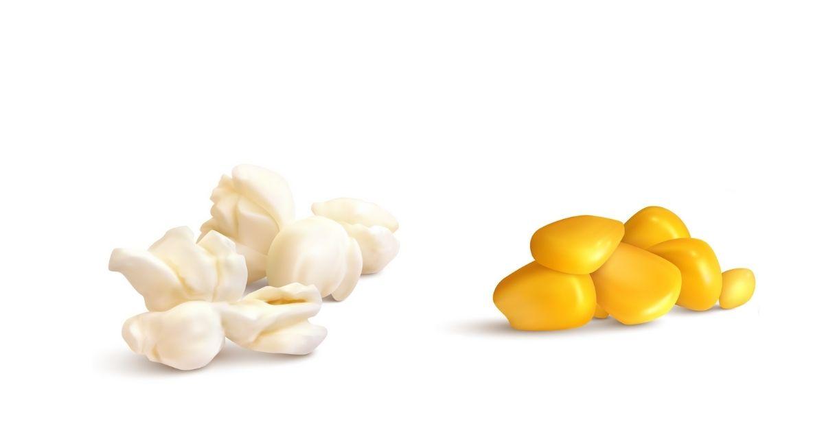 4 Propiedades del maíz para la salud