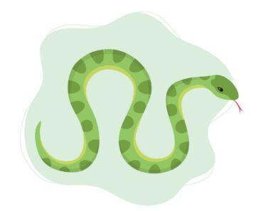 15 Cosas que pueden significar soñar con serpientes
