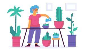 6 plantas que reducen el estrés y calman tus sentidos