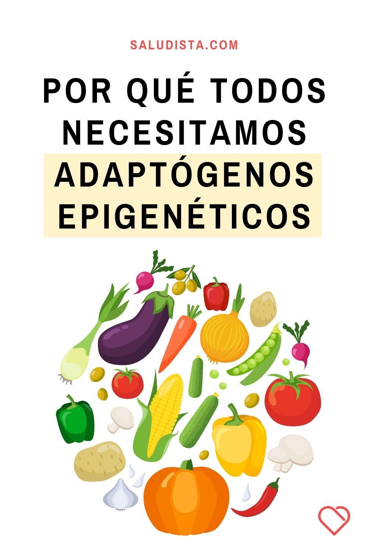 Por qué todos necesitamos adaptógenos epigenéticos, según un experto en medicina funcional