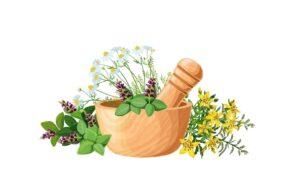 Formas naturales (a base de plantas) para tratar el sobrecrecimiento bacteriano