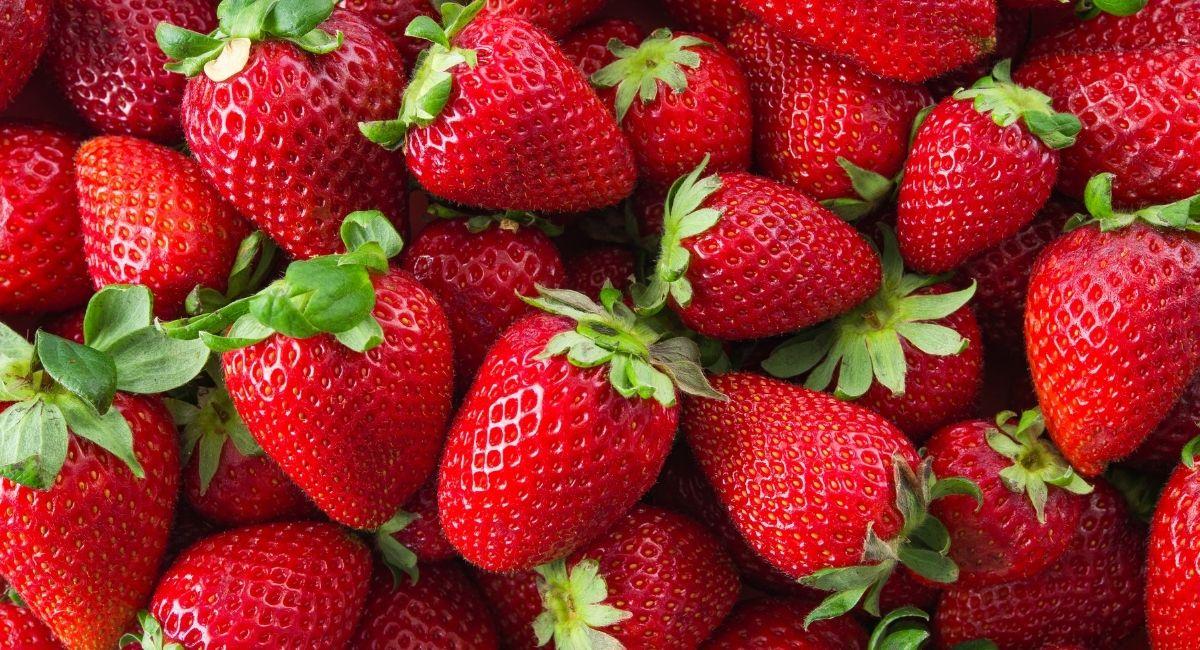 14 Alimentos antienvejecimiento