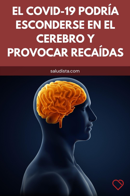 El COVID-19 podría esconderse en el cerebro y provocar recaídas