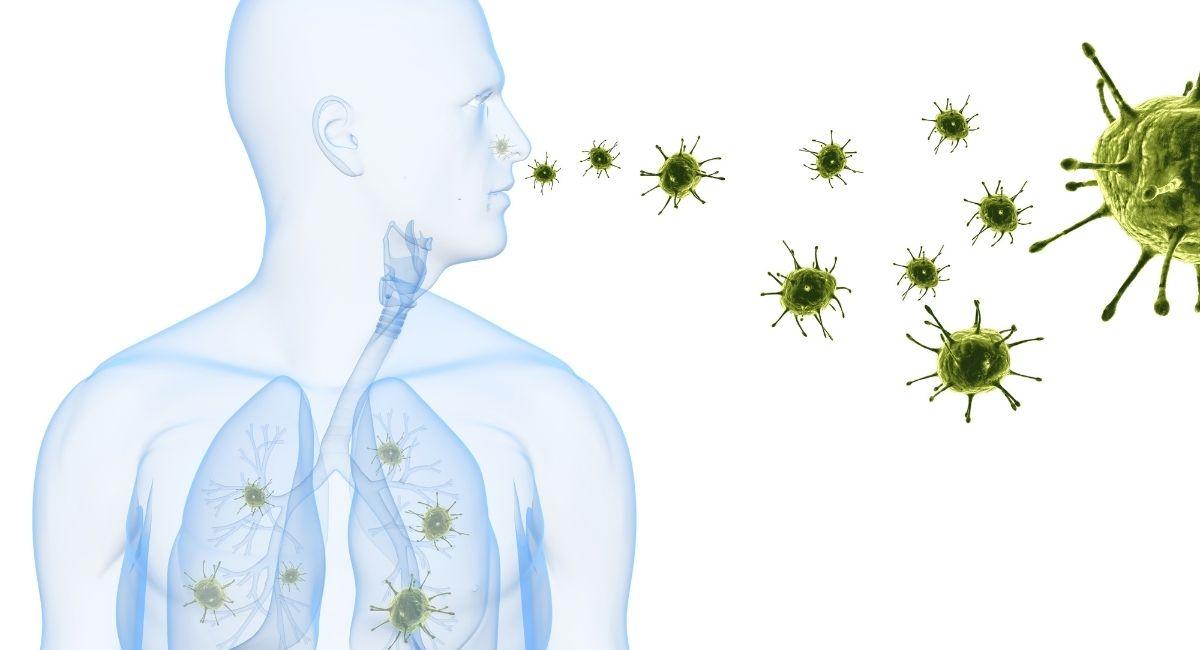 14 Formas de prevenir las enfermedades infecciosas