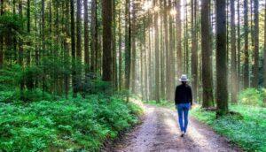 12 Formas sencillas que ayudan a relajarse