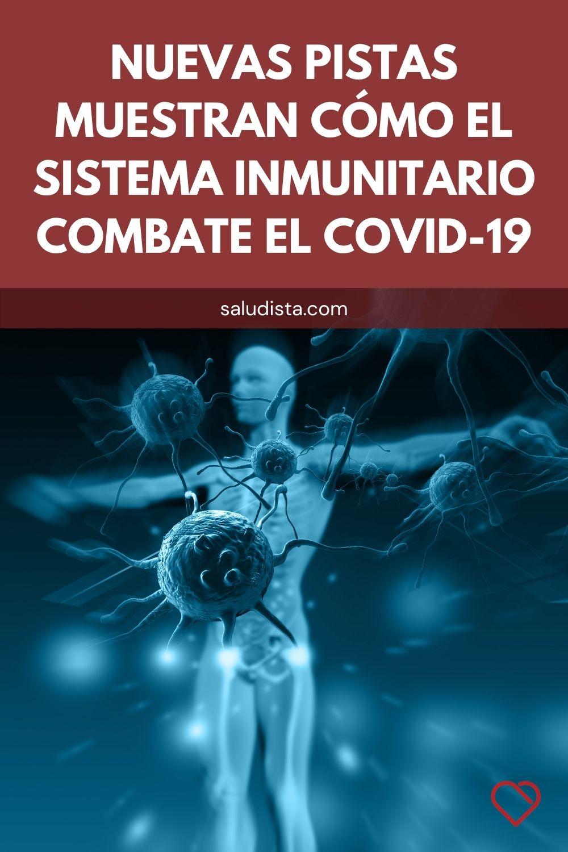 Nuevas pistas muestran cómo el sistema inmunitario combate el COVID-19