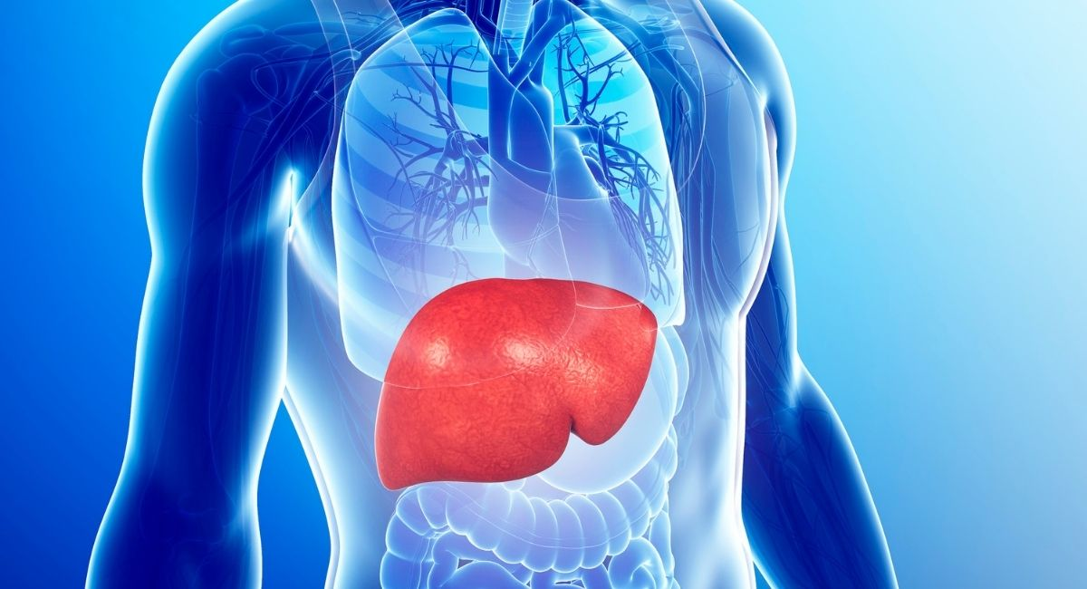 15 Consejos para mantener el hígado sano