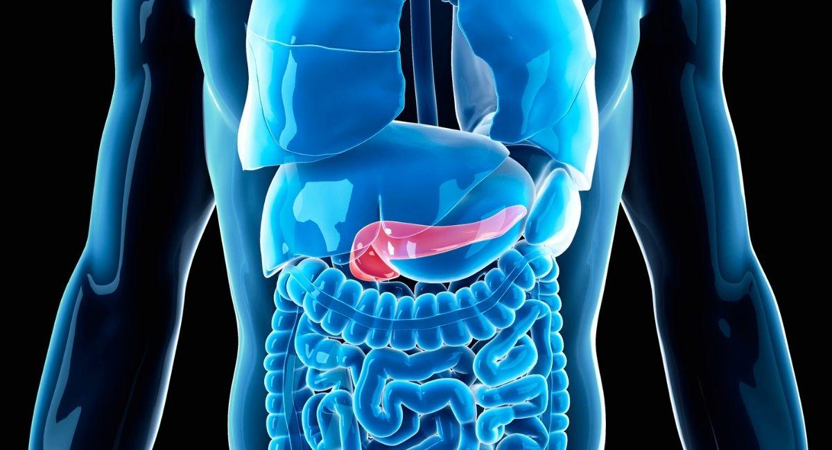 Cáncer de páncreas: Síntomas, causas y tratamiento