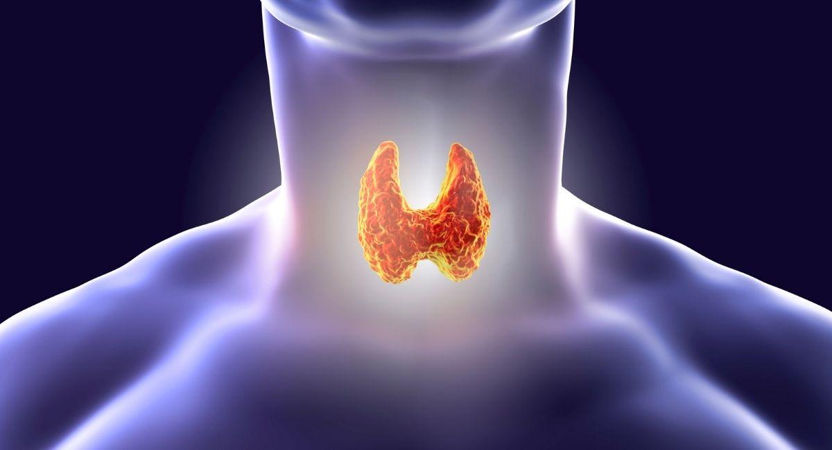 7 cambios de vida que pueden ayudar con los problemas de tiroides